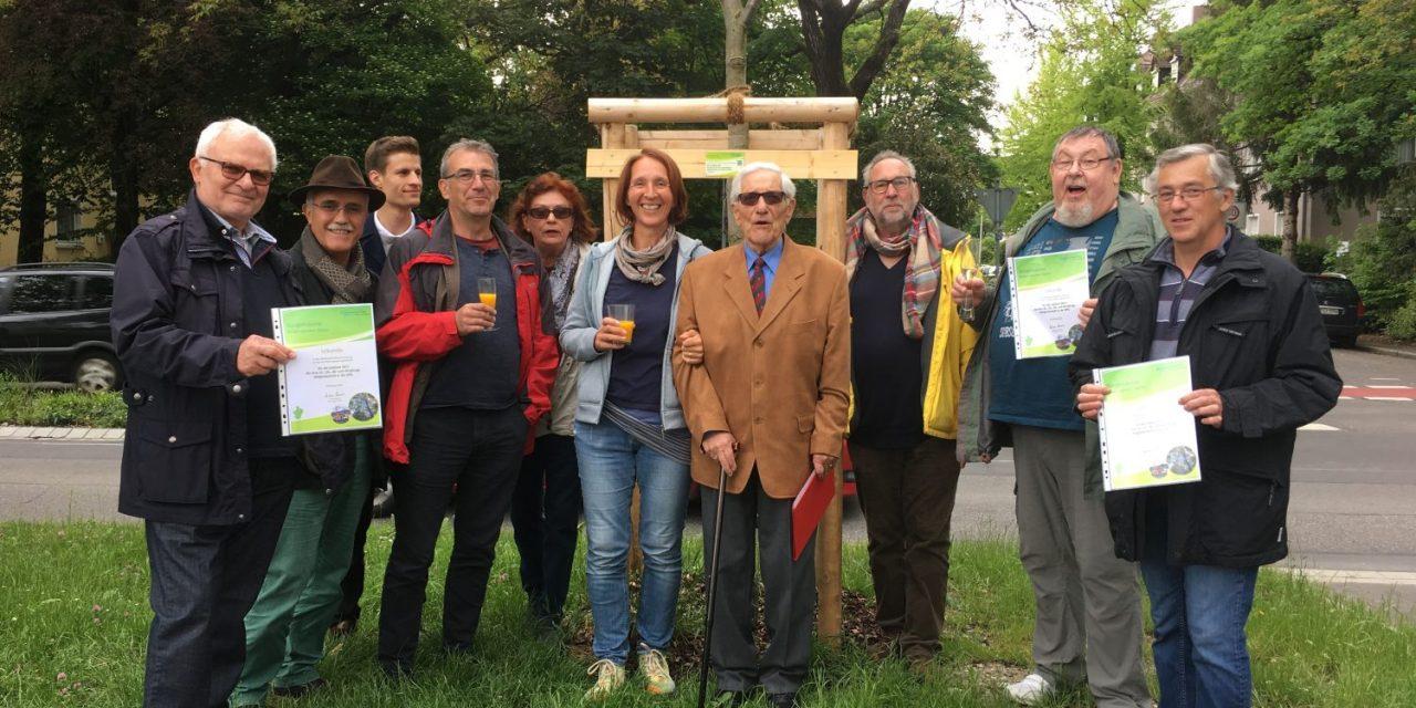 Ein Bürgerbaum für SPD-Jubilare 2017